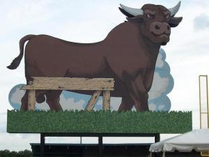 Durham_Bull_flip_side