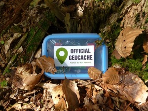 Geocache Cache Small Geocaching Logbook